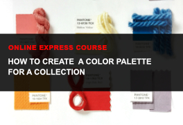 Express online course How to create a color palette for a collection